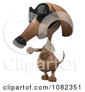 Clipart 3d Pookie Wiener Dog Wearing Shades And Presenting Royalty Free CGI Illustration