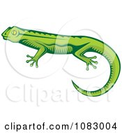 Clipart Green Lizard Royalty Free Vector Illustration by Any Vector