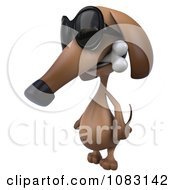 Clipart 3d Wiener Dog Wearing Sunglasses And Biting A Bone 1 Royalty Free CGI Illustration