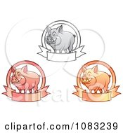 Clipart Grayscale Pink And Orange Pigs With Banners Royalty Free Vector Illustration