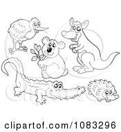 Clipart Outlined Kiwi Bird Koala Kangaroo Crocodile And Hedgehog Royalty Free Vector Illustration by visekart