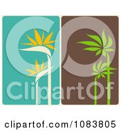 Turquoise And Brown Bird Of Paradise Flower And Palm Tree Backgrounds