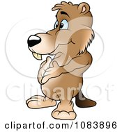 Clipart Beaver Standing With His Hands On His Belly Royalty Free Vector Illustration by dero