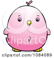 Clipart Chubby Pink Parakeet Chick Royalty Free Vector Illustration