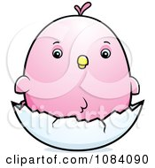 Clipart Chubby Pink Parakeet Chick On A Shell Royalty Free Vector Illustration