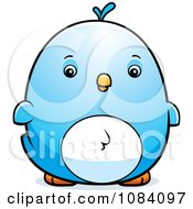 Clipart Chubby Bluebird Chick Royalty Free Vector Illustration