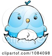 Clipart Chubby Bluebird Chick On A Shell Royalty Free Vector Illustration