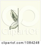 Clipart Green Leaves Invitation Background On Cream 2 Royalty Free Vector Illustration