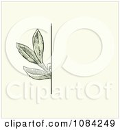 Clipart Green Leaves Invitation Background On Cream 3 Royalty Free Vector Illustration