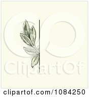Clipart Green Leaves Invitation Background On Cream 4 Royalty Free Vector Illustration