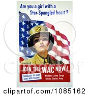 WAC Woman With American Flag Free Stock Illustration by JVPD