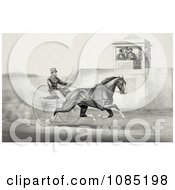 Group Of Men In A Tower Watching A Man Race A Horse Royalty Free Stock Illustration