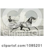 C Champlin Driving The Trotting Horse Named George Palmer Royalty Free Stock Illustration