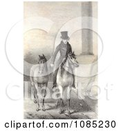 Andrew Jackson On Horseback Royalty Free Stock Illustration