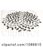 Clipart 3d Scattered Sunflower Seeds Royalty Free CGI Illustration by Leo Blanchette