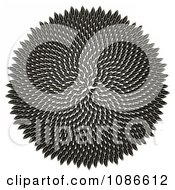 Clipart 3d Fibonacci Golden Ratio Circle Of Sunflower Seeds Royalty Free CGI Illustration by Leo Blanchette