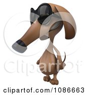 Clipart 3d Dachshund Wearing Sunglasses 1 Royalty Free CGI Illustration