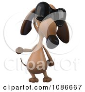 3d Dachshund Wearing Sunglasses 3
