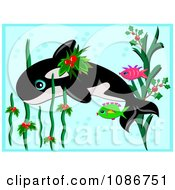 Orca Whale And Fish Swimming Through Christmas Holly Seaweed