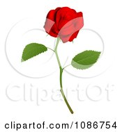 Clipart 3d Red Long Stemmed Rose Royalty Free Vector Illustration