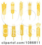 Clipart Golden Whole Grains Royalty Free Vector Illustration