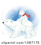 Poster, Art Print Of Baby Polar Bear Cub Riding On His Mothers Back And Wearing A Scarf