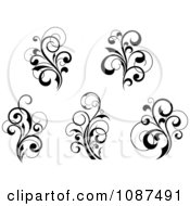 Black And White Flourish Motif Design Elements 2