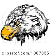 Clipart Bald Eagle Head Mascot With A Yellow Beak Royalty Free Vector Illustration