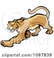 Clipart Prowling Cougar Puma Wild Cat Mascot Royalty Free Vector Illustration