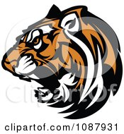 Clipart Fierce Growling Tiger Head Mascot Royalty Free Vector Illustration by Chromaco