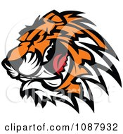 Clipart Ferocious Growling Tiger Head Mascot Royalty Free Vector Illustration by Chromaco