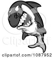 Clipart Aggressive Killer Whale Orca Mascot Leaping Royalty Free Vector Illustration