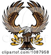 Clipart Flying Bald Eagle Mascot With Extended Talons Royalty Free Vector Illustration