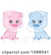 Clipart Cute Sitting Blue And Pink Boy And Girl Piglets Royalty Free Vector Illustration