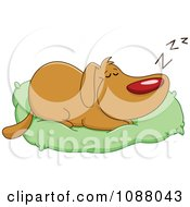 Happy Dog Sleeping On His Bed Pillow