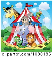 Clipart Circus Animals In A Big Top Tent Royalty Free Vector Illustration