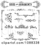 Ornate Black And White Design Element Ornaments