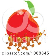 Clipart Ants Carrying Away A Red Apple Royalty Free Vector Illustration by Alex Bannykh