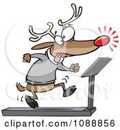 Christmas Reindeer Running On A Treadmill