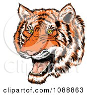 Clipart Mad Tiger Growling Royalty Free Vector Illustration