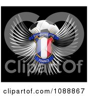 Clipart 3d Winged France Shield And Soccer Ball Royalty Free CGI Illustration