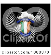 Clipart 3d Winged Ireland Shield And Soccer Ball Royalty Free CGI Illustration