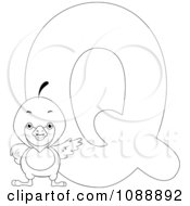Outlined Q Is For Quail Coloring Page