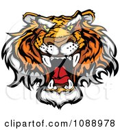 Clipart Mad Tiger Mascot Face Royalty Free Vector Illustration by Chromaco
