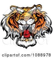 Mad Tiger Mascot Face