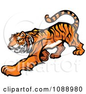 Clipart Tiger Mascot Stalking Royalty Free Vector Illustration by Chromaco