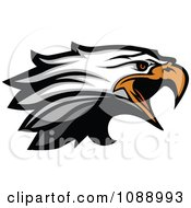 Clipart Attacking Bald Eagle Mascot Head Royalty Free Vector Illustration by Chromaco
