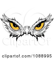 Clipart Yellow Bald Eagle Eyes Royalty Free Vector Illustration by Chromaco