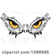 Clipart Yellow Bald Eagle Eyes Royalty Free Vector Illustration