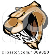 Clipart Aggressive Cougar Mascot Face Royalty Free Vector Illustration by Chromaco